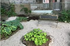 Garden revamping service