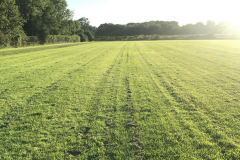 Commercial lawn cutting