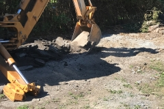 Excavation and Removal