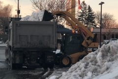 Snow Removal/Cartage