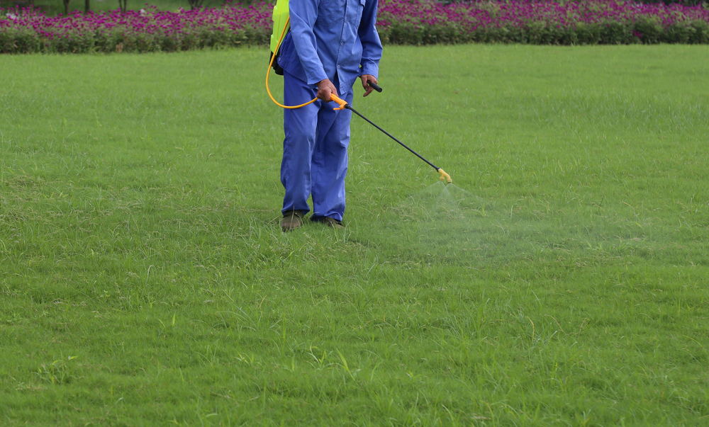 Landscape and Lawn Pests